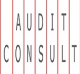 AUDIT CONSULT a.s.