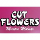 CUTFLOWERS